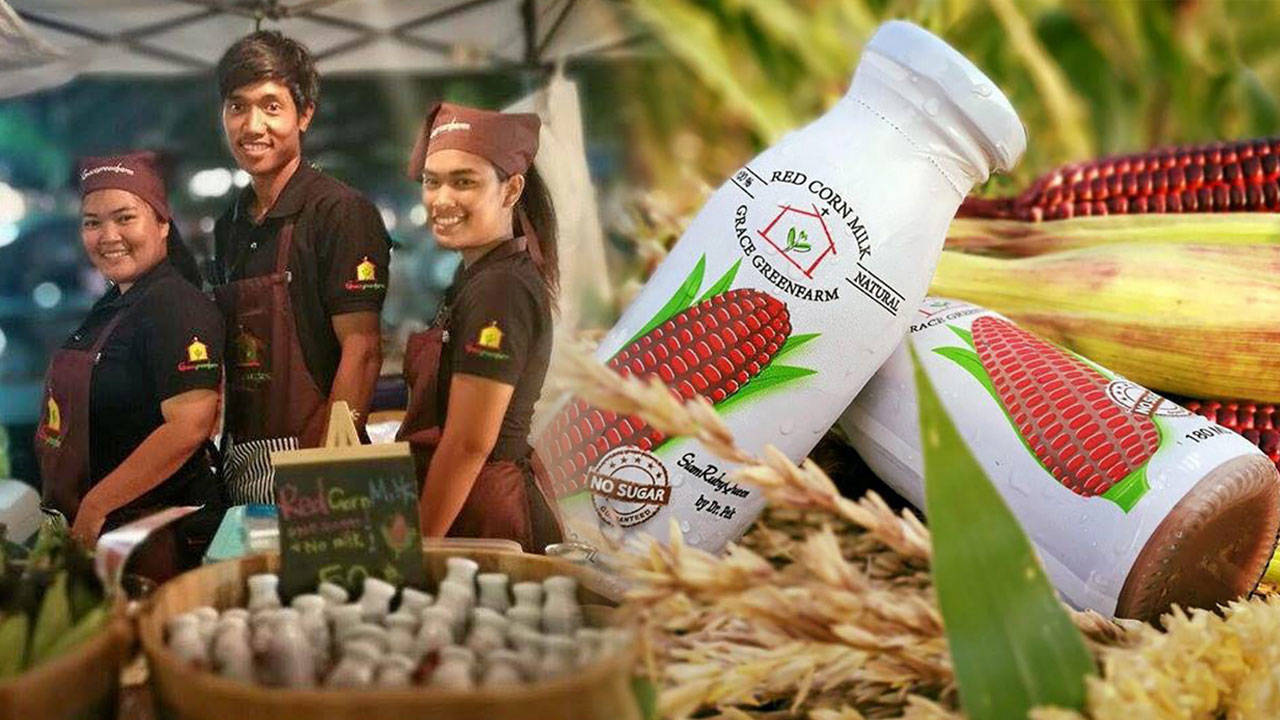 บัณฑิตเกษตรยุคไอที ปั้นข้าวโพดแดงขายผ่านโซเชียล
