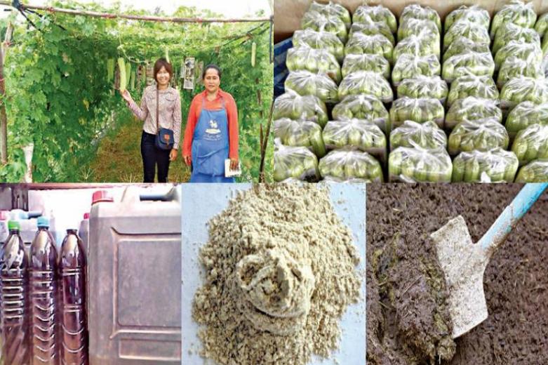 ใช้ปุ๋ยหมักโบกาชิมูลสัตว์ ดีต่อพืช ผู้ปลูก และผู้บริโภค
