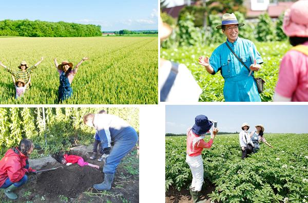 ท่องเที่ยวเชิงเกษตรแบบ Farm Picnic สักครั้งในฮอกไกโด