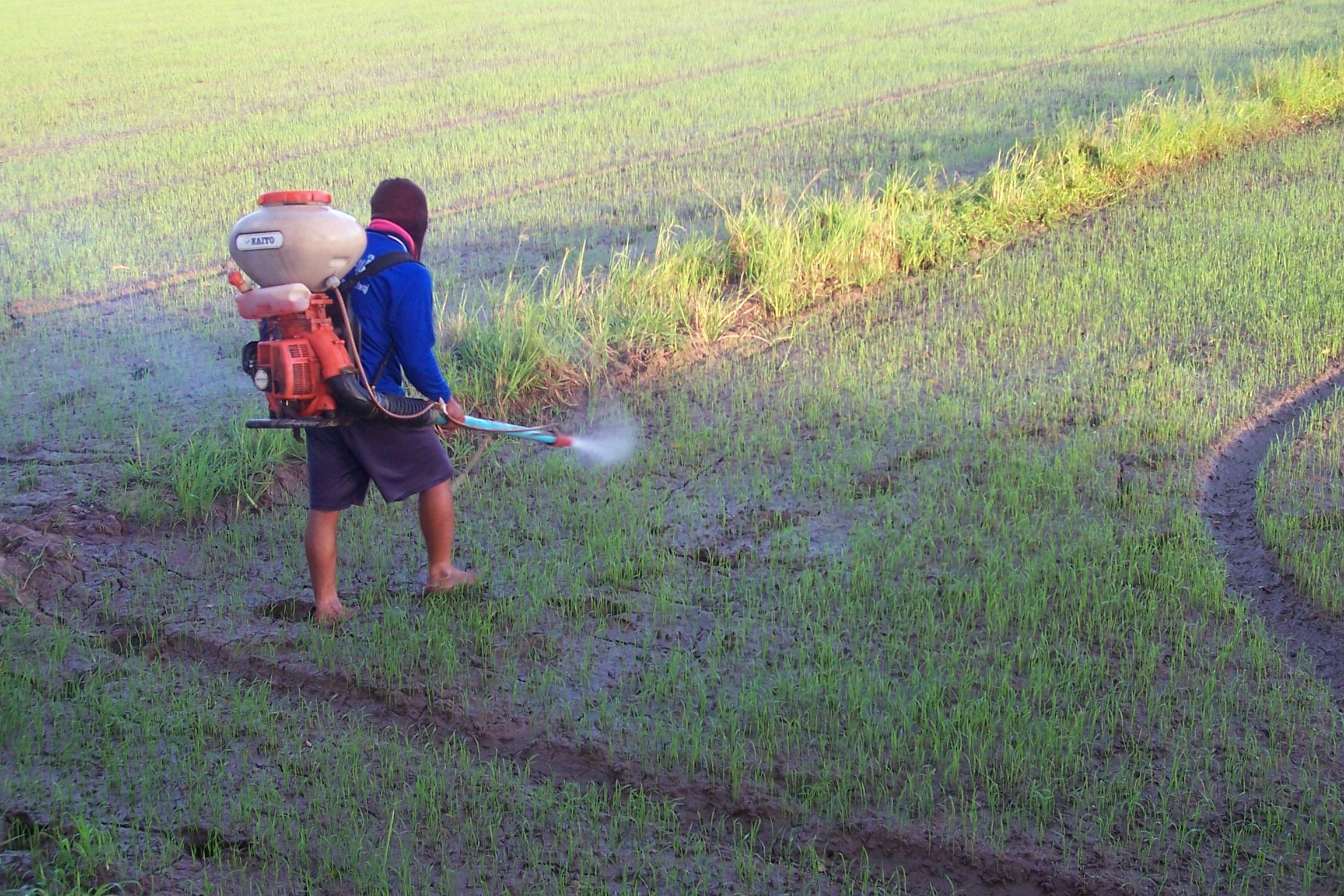 นำเข้าเคมีเกษตร